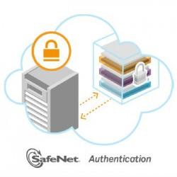 SafeNet 身分驗證產品