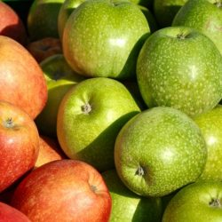 apple-fruit-food-1